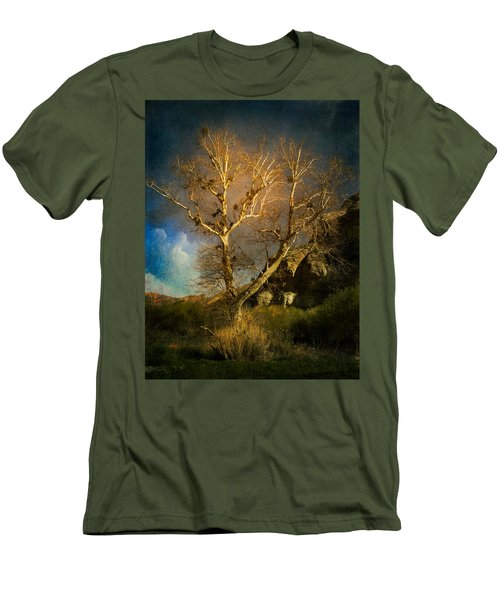 Cottonwood Tree Men's T-Shirt (Athletic Fit)