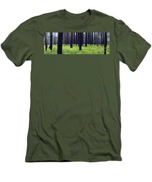 Springtime In The Croatan National Forest Men's T-Shirt (Athletic Fit)