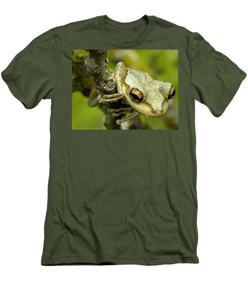 Cuban Tree Frog  Men's T-Shirt (Slim Fit) by Chris Mercer