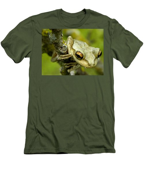 Cuban Tree Frog  Men's T-Shirt (Athletic Fit)