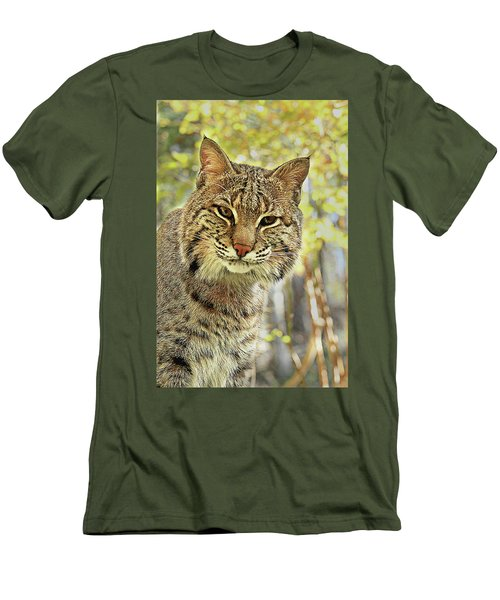 Men's T-Shirt (Slim Fit) featuring the photograph Curiosity The Bobcat by Jessica Brawley
