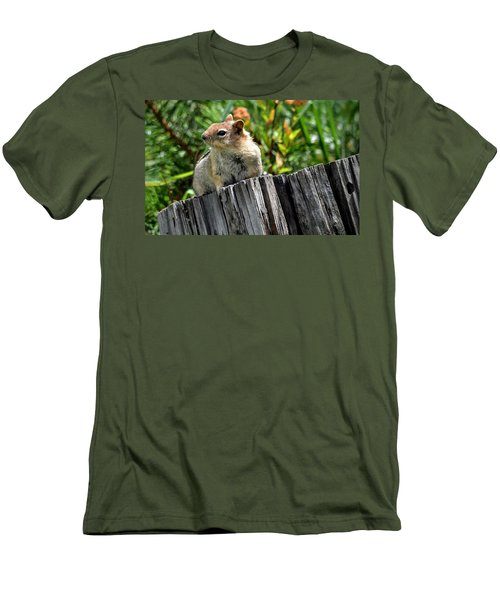 Curious Chipmunk Men's T-Shirt (Slim Fit) by AJ Schibig