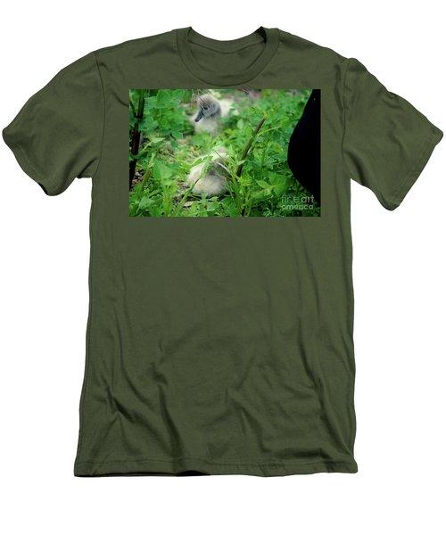 Cygnets V Men's T-Shirt (Slim Fit) by Cassandra Buckley