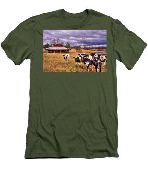 Dairy Heifer Groupies The Red Barn Art Men's T-Shirt (Slim Fit) by Reid Callaway