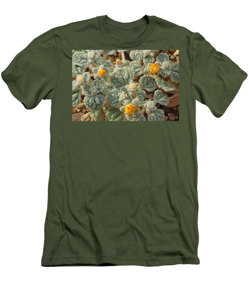 Death Valley Superbloom 302 Men's T-Shirt (Slim Fit) by Daniel Woodrum