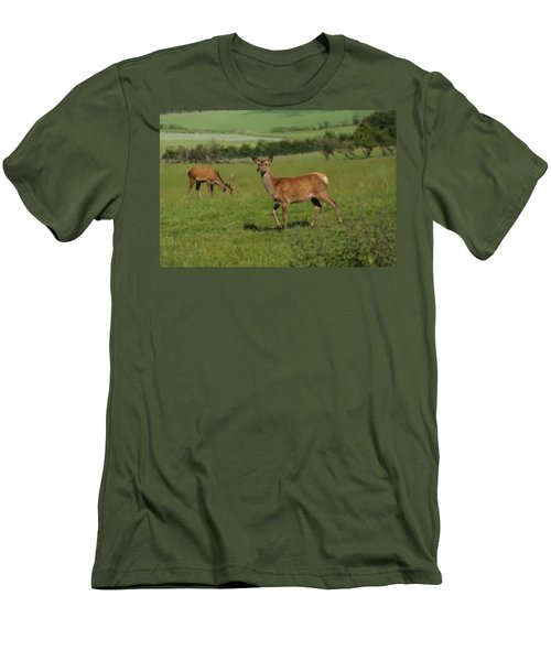 Deers On A Hill Pasture. Men's T-Shirt (Athletic Fit)