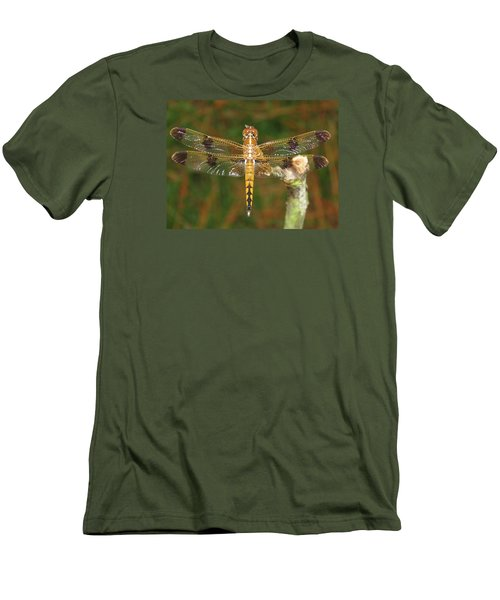Painted Skimmer Dragonfly Men's T-Shirt (Slim Fit) by Phyllis Beiser