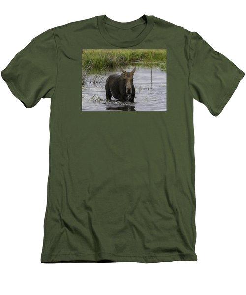 Drooling Cow Moose Men's T-Shirt (Slim Fit) by Elizabeth Eldridge