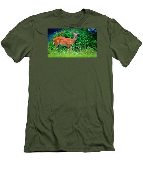 Dusk Deer Men's T-Shirt (Slim Fit) by Brian Stevens