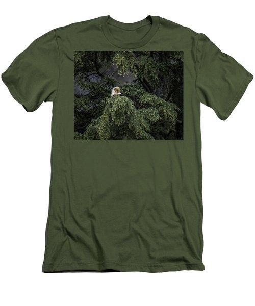 Eagle Tree Men's T-Shirt (Slim Fit) by Timothy Latta
