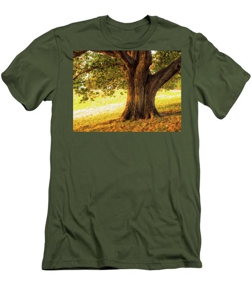 Early Autumn Oak Men's T-Shirt (Athletic Fit)