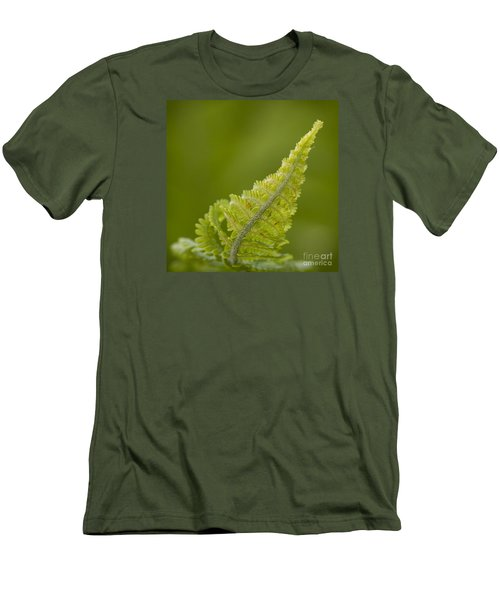 Elegant Fern. Men's T-Shirt (Slim Fit) by Clare Bambers