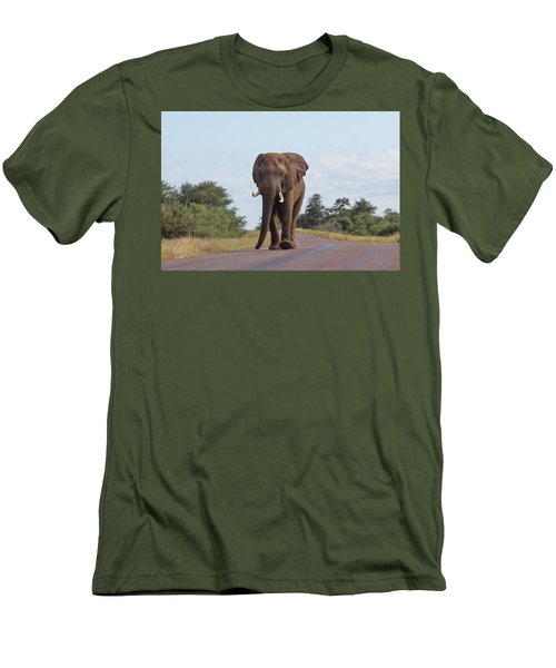 Elephant In Kruger Men's T-Shirt (Athletic Fit)