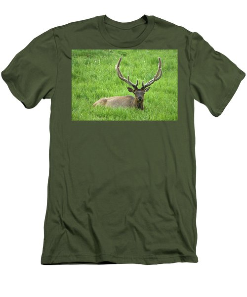 Men's T-Shirt (Athletic Fit) featuring the photograph Elk 6 by Gary Lengyel
