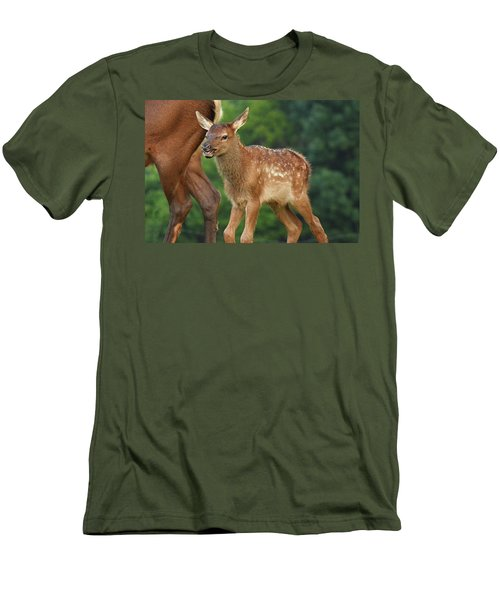 Elk Calf Arrives Men's T-Shirt (Slim Fit) by Alan Lenk