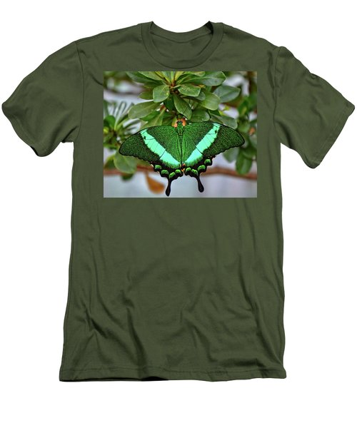 Emerald Swallowtail Butterfly Men's T-Shirt (Slim Fit) by Ronda Ryan