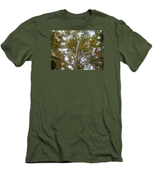 Enlightened Autumn Men's T-Shirt (Athletic Fit)