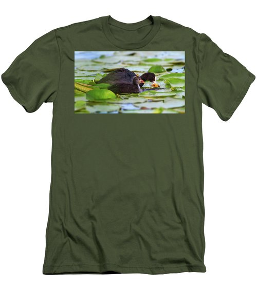 Eurasian Or Common Coot, Fulicula Atra, Duck And Duckling Men's T-Shirt (Slim Fit) by Elenarts - Elena Duvernay photo