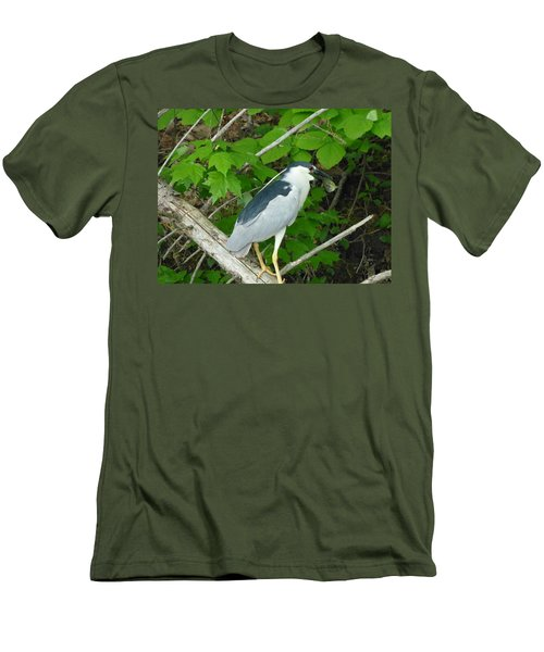 Evening Snack For A Night Heron Men's T-Shirt (Slim Fit) by Donald C Morgan