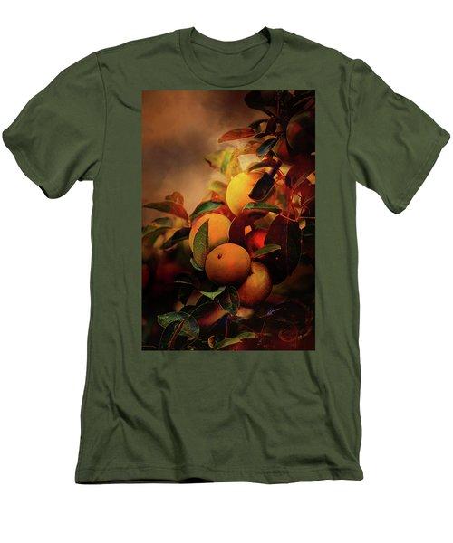 Fall Apples A Living Still Life Men's T-Shirt (Athletic Fit)