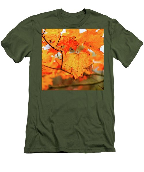 Fall Maple Leaf Men's T-Shirt (Athletic Fit)