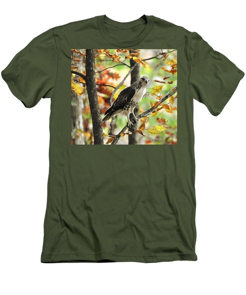 Fall Red-tailed Hawk Men's T-Shirt (Athletic Fit)