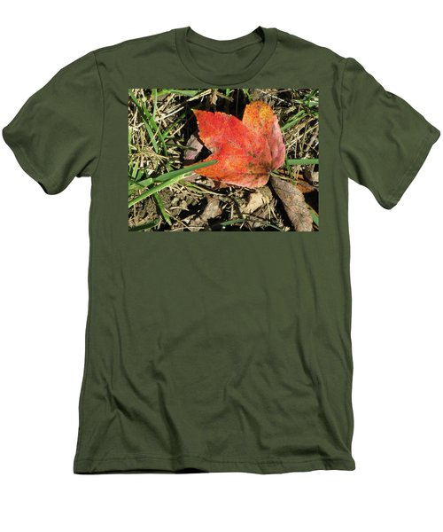 Fallen Leaf Men's T-Shirt (Slim Fit) by Michele Wilson