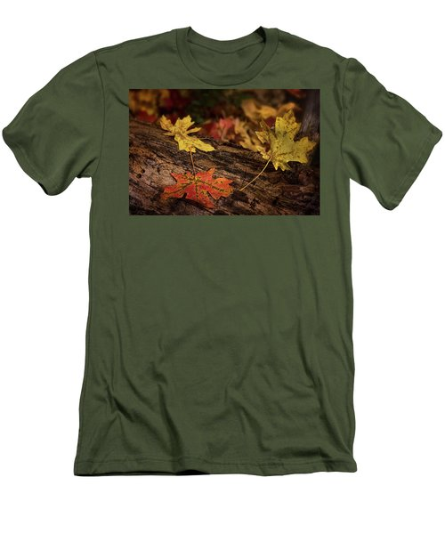 Men's T-Shirt (Athletic Fit) featuring the photograph Fallen Maple Leaves  by Saija Lehtonen