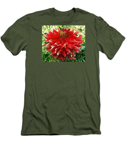 Fancy Red Dahlia Men's T-Shirt (Athletic Fit)