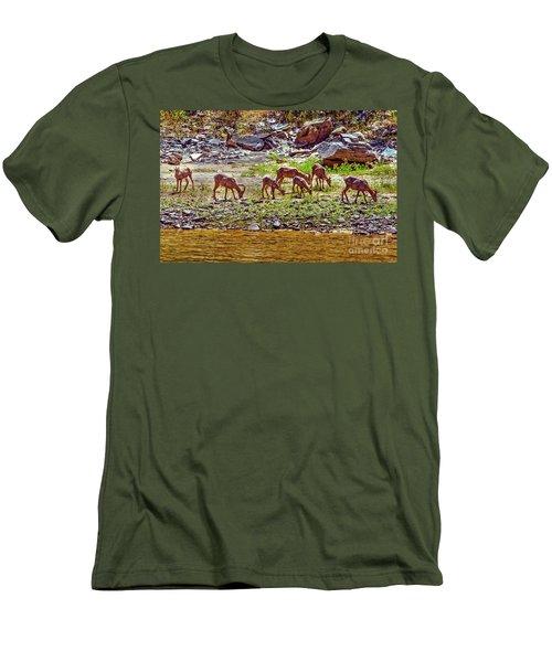 Feeding Mountain Sheep Men's T-Shirt (Slim Fit) by Robert Bales