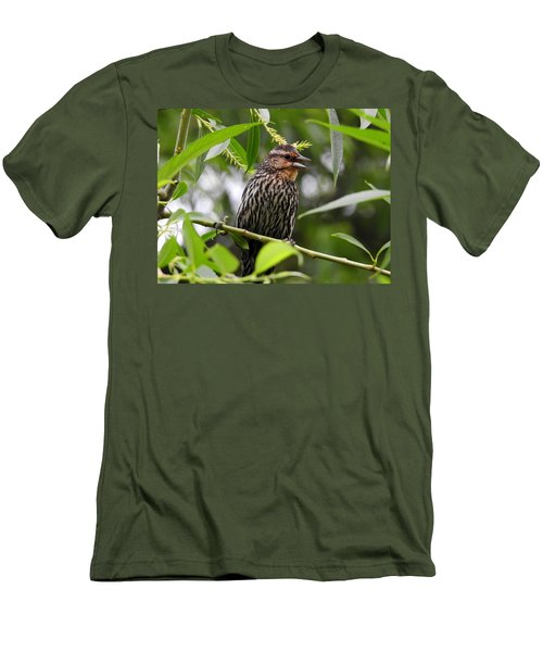 Female Redwinged Blackbird Men's T-Shirt (Athletic Fit)