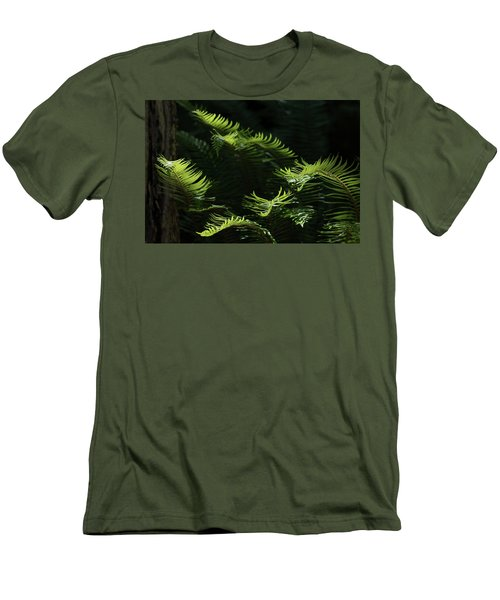 Ferns In The Forest Men's T-Shirt (Slim Fit) by Keith Boone