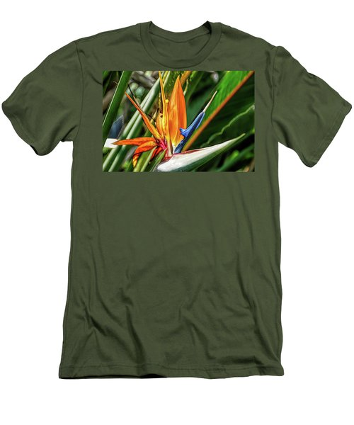 Men's T-Shirt (Athletic Fit) featuring the photograph Fine Wine Cafe Bird Of Paradise by Aimee L Maher Photography and Art Visit ALMGallerydotcom