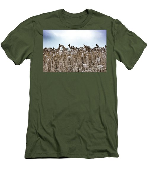 First Snow On Roman Reed Men's T-Shirt (Athletic Fit)