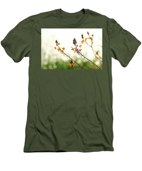 Flowering In Israel At The Sunset Men's T-Shirt (Slim Fit) by Yoel Koskas