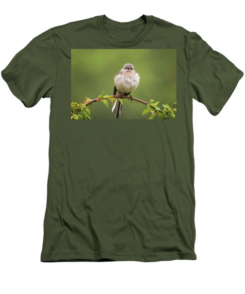 Fluffy Mockingbird Men's T-Shirt (Slim Fit) by Terry DeLuco
