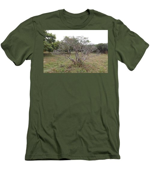 Forest Character Tree Men's T-Shirt (Athletic Fit)