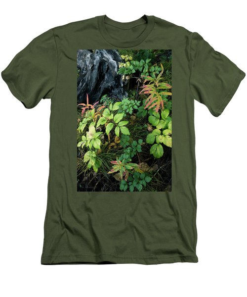 Forest Floor In Early Autumn Men's T-Shirt (Athletic Fit)