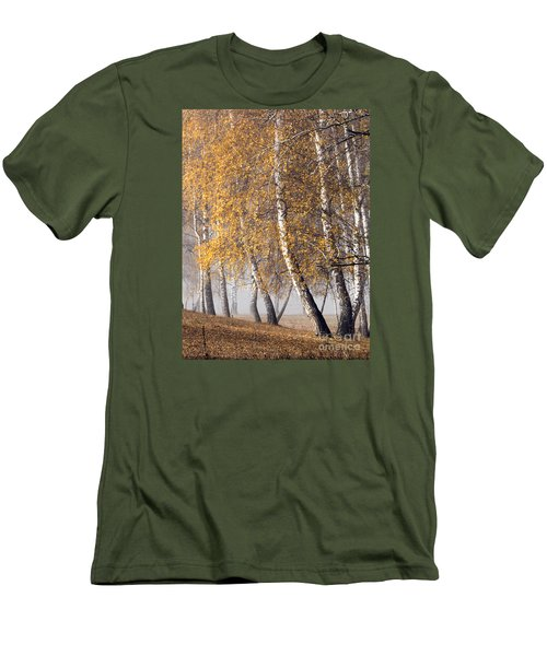 Forest With Birches In The Autumn Men's T-Shirt (Slim Fit) by Odon Czintos