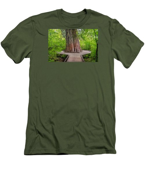 From Grove Of The Patriarchs 1 Men's T-Shirt (Athletic Fit)