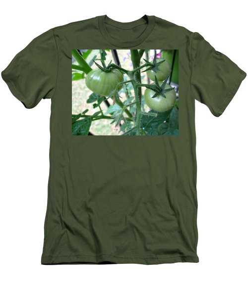 Fruit Or Veg Men's T-Shirt (Athletic Fit)
