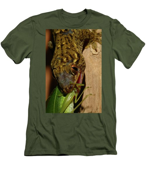 Gecko Feed Men's T-Shirt (Athletic Fit)