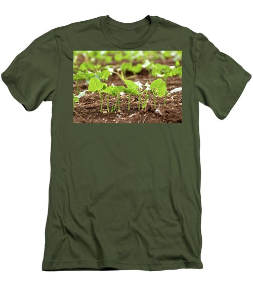 New Sprouts In The Promised Land Men's T-Shirt (Slim Fit) by Yoel Koskas