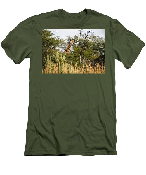 Giraffe Browsing Men's T-Shirt (Athletic Fit)