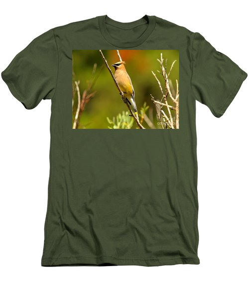 Glacier Cedar Waxwing Men's T-Shirt (Slim Fit) by Adam Jewell