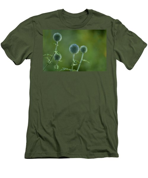 Globe Thistles Echinops Men's T-Shirt (Athletic Fit)