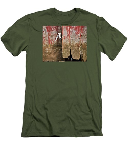Goat And Old Barn Door Men's T-Shirt (Athletic Fit)