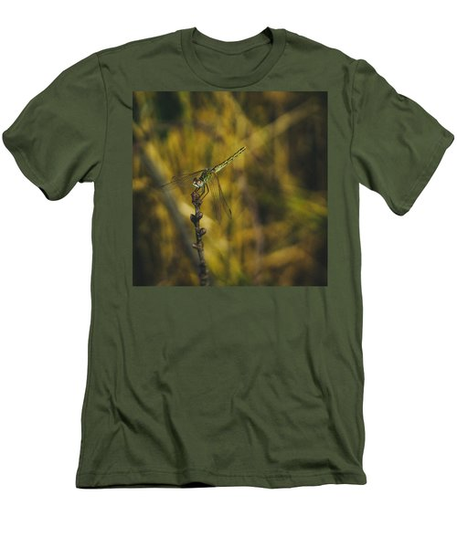 Golden Drangonfly Men's T-Shirt (Athletic Fit)