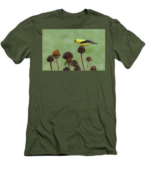 Goldfinch And Coneflowers Men's T-Shirt (Athletic Fit)