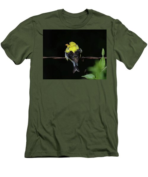 Goldfinch Men's T-Shirt (Slim Fit) by Ronda Ryan